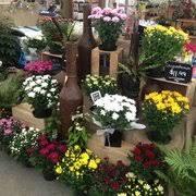 Kings Plant Barn Remuera Kings Plant Barn Gardening Centres 118 Asquith Ave Mt Albert