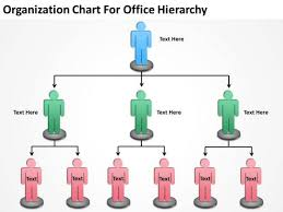 organization chart for office hierarchy ppt sample business plans
