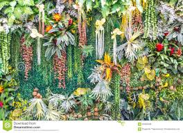 garden wall artificial vertical garden wall stock photo image 65089499