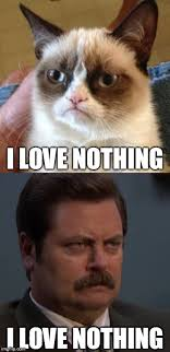Grumpy Cat Meme Love - nothing imgflip