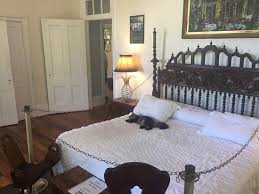 cats sleeping on the master bed picture of the ernest hemingway