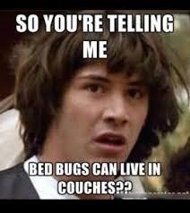 Bed Bug Meme - 50 bed bug memes funny memes of bed bug