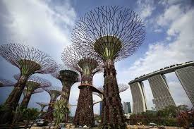 supertrees of singapore solar powered tree structure xcitefun net