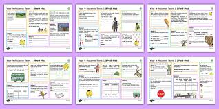 identifying a determiner lesson teaching pack pack teaching
