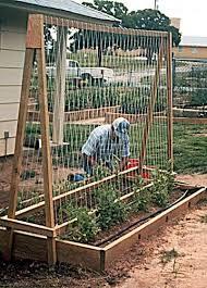 raised bed garden layouts permanent raised bed gardening