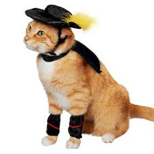 Halloween Costumes Cat Pet Halloween Costumes Cute Dog Cat Halloween Costume Ideas