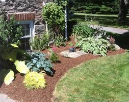 Landscaping Ideas Front Yard by Front Yard Design For Amys Office Landscape Low Maintenance