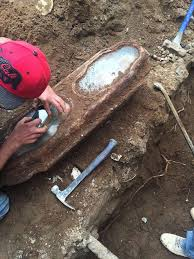 How To Raise An Outdoor Spigot Home Guides Sf Gate Mystery Found In Coffin Beneath Sf Home Is Identified Sfgate