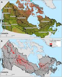 Canada Forest Fire Map by A Nationwide Annual Characterization Of 25 Years Of Forest