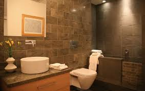 design a bathroom what makes wall hung toilets special features you should
