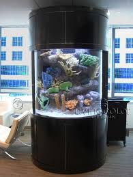 254 best aquariums with style images on custom