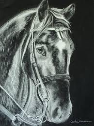 charcoal horse drawings fine art america