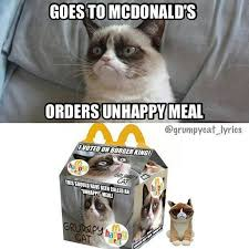 Grumpy Cat Meme Love - 223 best i love tard the grumpy cat images on pinterest jokes