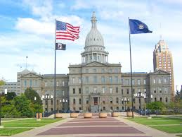 Michigans Flag Bill Aims To End Michigan U0027s Pistol Registration Mandate Wkar