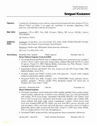 resume text format best of plain text resume sle plain text resume sle