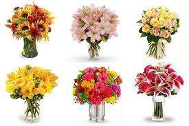 flower of the month club flower of the month club flowers of the month club flowers