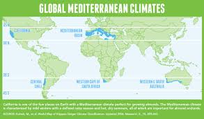 Food Map Diet Adopting And Protecting The Mediterranean Diet California