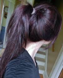 brown plum hair color darkest plum brown hair color by beautiful age pictures design