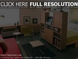 one room apartment interior design studio apartment ideas studio