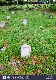 pictures of tombstones a row of tombstones on the grass stock photo 130372869 alamy