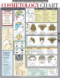 cosmetology chart a tool for beauty professionals hairstyles