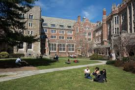 yale law committee releases report on diversity and