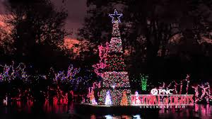 Zoo Lights Memphis Tn by 100 Lights At Zoo Christmas Zoo Lights Christmas Lights