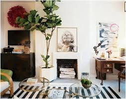 living room trees 7 fruit trees that you can grow in your living room home decor