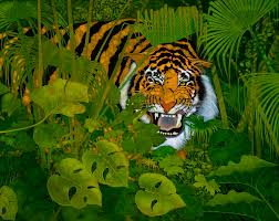 tiger in the jungle painting by ken church