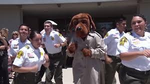 Video San Bernardino County Sheriff U0027s Running Man Challenge