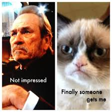 Tommy Lee Jones Meme - tommy lee jones grumpy cat meme by request thecount com
