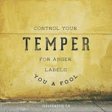 best 25 anger in the bible ideas on fool in the bible