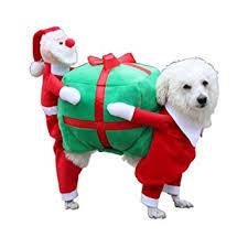 puppy clothes cat wear santa sends