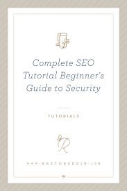 complete seo tutorial chapter 1 beginner u0027s guide to security
