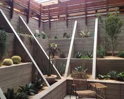 modern trends cactus garden ideas u0026 tips the garden glove