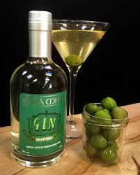 martini mixer cocktail of the week da mhile distillery u0027s dirty martini and its