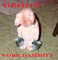 Tired At Work Meme - tired of work dammit