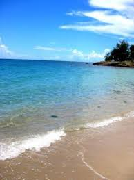 chambre d hote sainte luce martinique chambre d hôtes ti paradis sainte luce martinique bord de mer