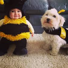 baby costume 12 photos of babies and dogs wearing matching