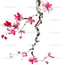 this is the extra cool chinese tree pink blossom wallpaper