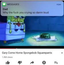 Why Are You Crying Meme - why the fuck you crying so loud dankmemes