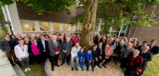 all news erskine house tree crowned northern ireland s tree of