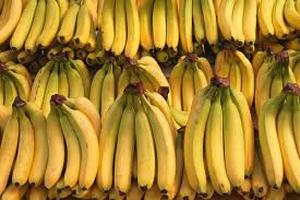 the improbable rise of the banana america u0027s most popular fruit vox