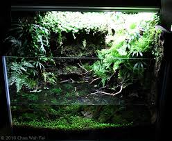 Aquarium Aquascapes Manage Your Freshwater Aquarium Tropical Fishes And Plants Aga
