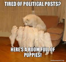Tired Dog Meme - tired of political posts here s a room full of puppies