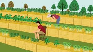 drip irrigation fix com