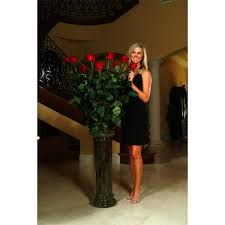 Long Stem Roses 5 To 6ft Fresh Long Stem Red Rose Bouquet