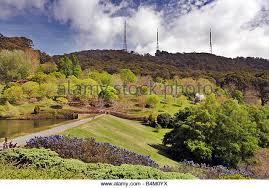 Mt Lofty Botanic Gardens Mount Lofty Botanical Garden Stock Photos Mount Lofty Botanical