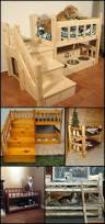 best 25 dog bunk beds ideas on pinterest dog beds dog rooms