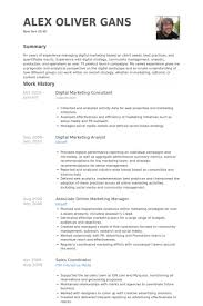 Sales Coordinator Job Description Resume by Digital Marketing Consultant Resume Samples Visualcv Resume